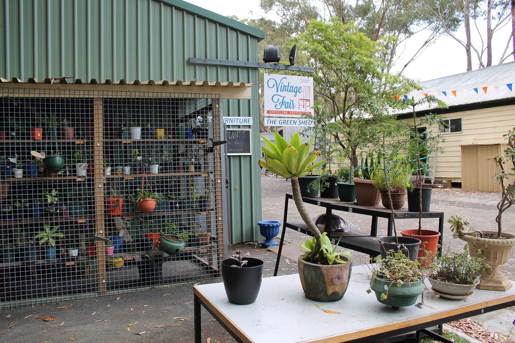 Vintage Fair Plant Nursery