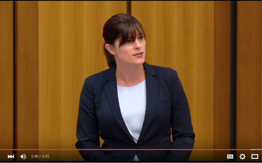 Lucy Wicks MP announces NDIS, commends Fairhaven